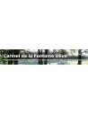 Carmel de la Fontaine Olive